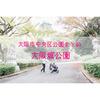 【公園情報】大阪城公園(最寄り森ノ宮):大阪市中央区公園まとめ