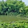 大谷堰(千葉県茂原)