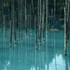 No:074【北海道】美瑛の景勝地「白金の青い池」!観光地化前に訪問した物語がこれだ!!
