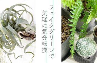 観葉植物は枯らしそう……と悩むあなたへ。在宅勤務のデスクに「フェイクグリーン」を飾って気分転換を