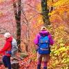 大山登山は初心者向け?滑落事故が起こる場所と紅葉の時期と服装!