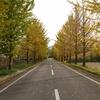 兵庫県北部 ブルーリッジホテル宿泊記