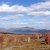 「樽前山」トレラン