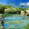 シギラ黄金温泉ジャングルプール(沖縄県宮古島)