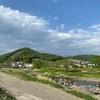 210502 桐生川沿いに咲く花々