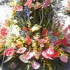 はこだて花と緑のフェスティバル 2014