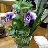 ウエルカム「生け花」