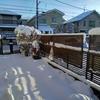 4年ぶりの大雪です💦