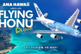 〔2019年12月ハワイ・フライト準備編〕ANA/A380フライングホヌのプレエコ&カウチをマイルで発券!