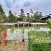 妙心寺の放生池(京都府京都)