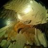 ラーメン店で鷹の椅子にすわる