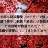 【RIZIN】金太郎は超攻撃型ファイターで強い?過去には朝倉未来との対戦が期待された??14歳で背中に刺青を入れ15歳で極道になった過去も??これまでの戦績や経歴を徹底紹介!