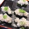 御殿場市神場の「沼津魚がし鮨 流れ鮨 御殿場店」で寿司&やっちまった話