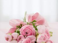 乳癌治療ステップ7・癌細胞が好む体質<乳がんブログVol.408>