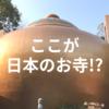 ここが日本のお寺!?怪しさ満点の珍スポット「石手寺」の魅力とは?