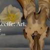 ジョージア・オキーフ展「アート・イメージ・スタイル」@ピーボディ・エセックス美術館