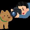 今週のPocket:GoogleMarketingNext、WELQ退場から半年、P&G、R/GA日本支社、など12記事。