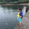 最近の釣りは・・・