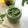 レンズ豆の間引き菜で春の香りのグリーンペースト