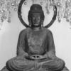 【京都】太秦西光寺 平安の阿弥陀如来と令和の両脇侍