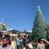 クリスマスシーズン到来!! メルボルンがサンタだらけに!?