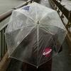 大雨の日に傘を欲しがる