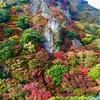 小豆島・寒霞渓の紅葉