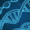 遺伝子操作やクローン人間というワードに内包されたロマンについて話したい