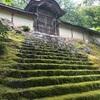 京都の秘境で抹茶の池を見つけた