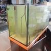 オーバーフロー水槽W120cm準備中でございます。[ペットバルーン・大阪府・中古引き取り(回収)・中古買取・水槽】