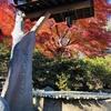 【女一人旅】東京あちこち・上野恩賜公園(東京都台東区を歩こう)清水観音堂