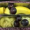 お弁当を果物だけにして一週間が経ちました!これってロカボですか?