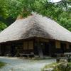 三田にある峠の茶屋のわらびもちと不思議なアマガエル