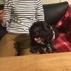 調布「 創作ダイニング PERLE GALLEY【ペルル ギャレー】」は犬同伴でイタリアンが食べれるよ!