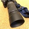 これまで望遠レンズを持つ必要がなかった私が「はじめての望遠レンズ」に選んだのはTAMRON 100-400mm F/4.5-6.3 Di VC USD!