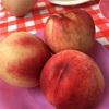 山梨の桃狩り最新情報、子連れ食べ放題は御坂農園が最強だった!
