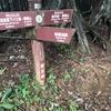 明王峠から景信山: 陣馬山から高尾山縦走 (4)