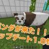 【マイクラBE・速報】スイッチマイクラに1.8登場!新MOBのパンダとネコが追加!