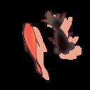 イキリキンギョ鉢