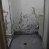 都営住宅 浴室とトイレの床 リフォーム 足立区