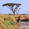 世界193ヶ国をひとことで解説 アフリカ大湖沼編