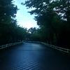 白昼夢を散歩 8