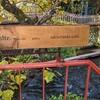 【ディレッタント カフェ】清らかな川を見ながら食事できるイタリアンのお店(静岡県三島市)