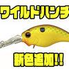 【EVERGREEN】信じて引き倒せる釣れるクランクベイト「ワイルドハンチ」に新色追加!