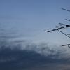 12月6日(木)晴れ 「エソテリックの -惑星- 」