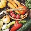 かしこく食べてやせ体質に!時間栄養学ダイエットについて