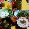 【今日の食卓】ガパオかと思ったが豚挽肉とインゲンなどの炒め。タイ人サルちゃんが作ると和食も超絶美味になる秘密は?