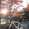 【サイクリングコース】奈良県北部を起点にしたオススメのポタリングコースをまとめました