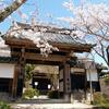 京都桜シリーズ 古刹の勝持寺