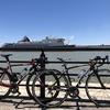 【ロードバイク】サイクリング: 新潟島1周とか信濃川沿い延々ライドとか75km